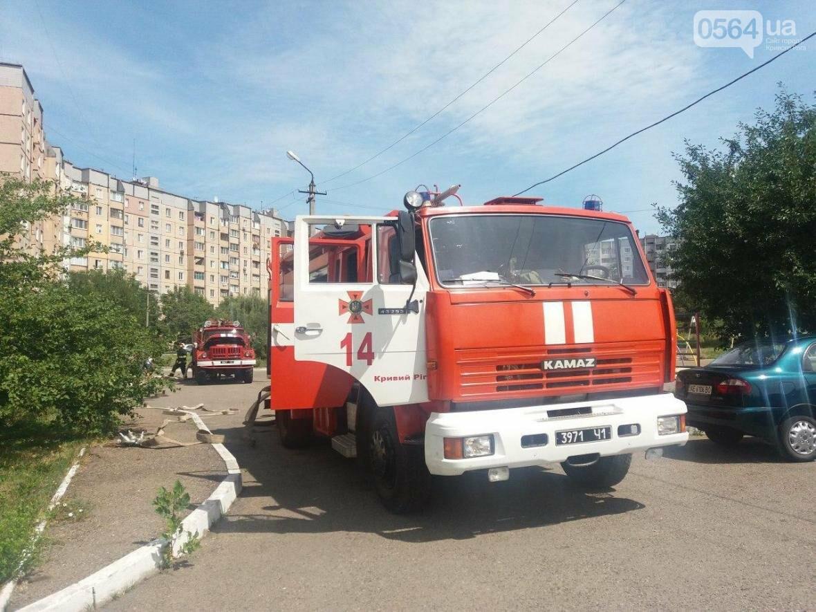 Криворожские спасатели тушили пожар на 11 этаже (ФОТО), фото-4