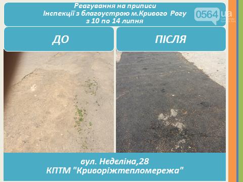 Инспекция по благоустройству Кривого Рога наказала частные ЖЭКи (ФОТО), фото-2