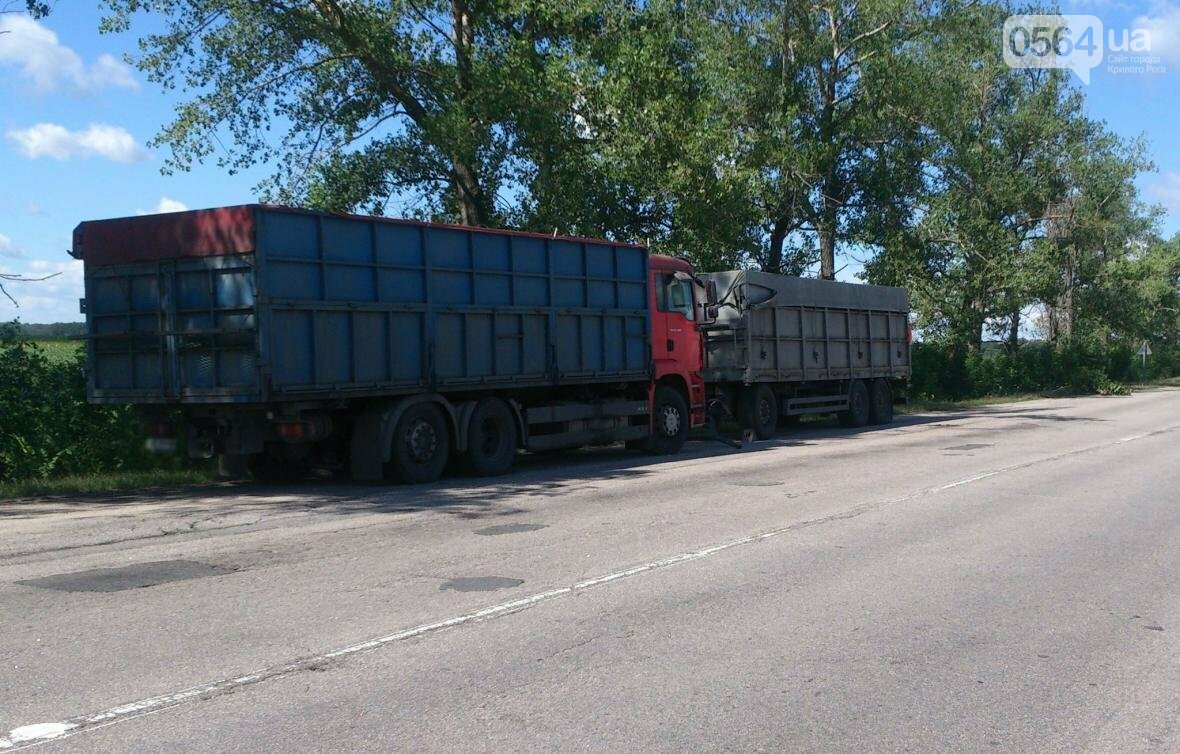 Водителя грузовика из Кривого Рога ограбили прямо на трассе (ФОТО), фото-2