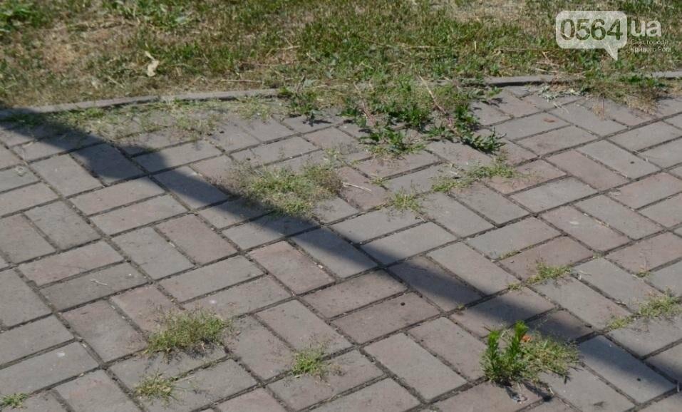 Как выглядит сегодня единственный в Кривом Роге памятник жертвам Голодомора (ФОТО), фото-9
