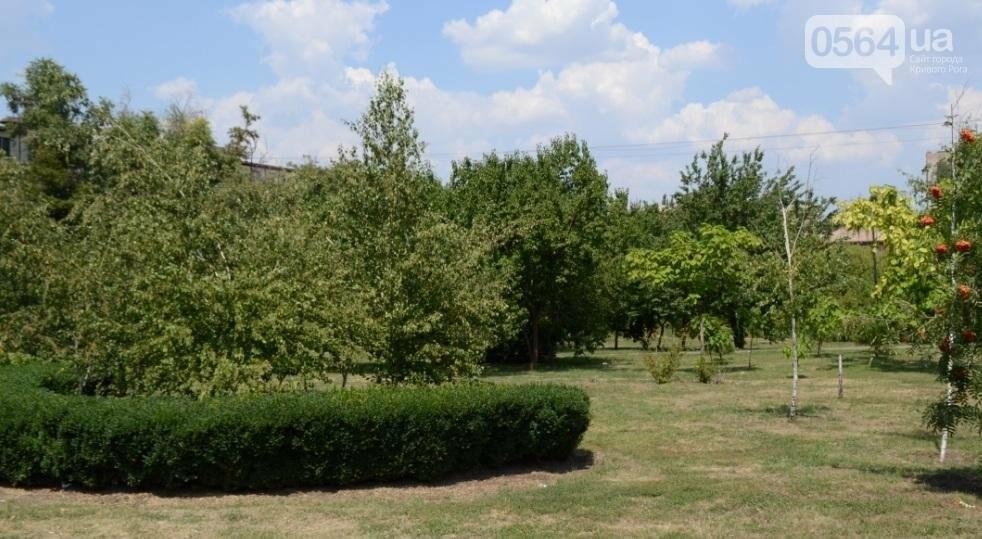 Как выглядит сегодня единственный в Кривом Роге памятник жертвам Голодомора (ФОТО), фото-11