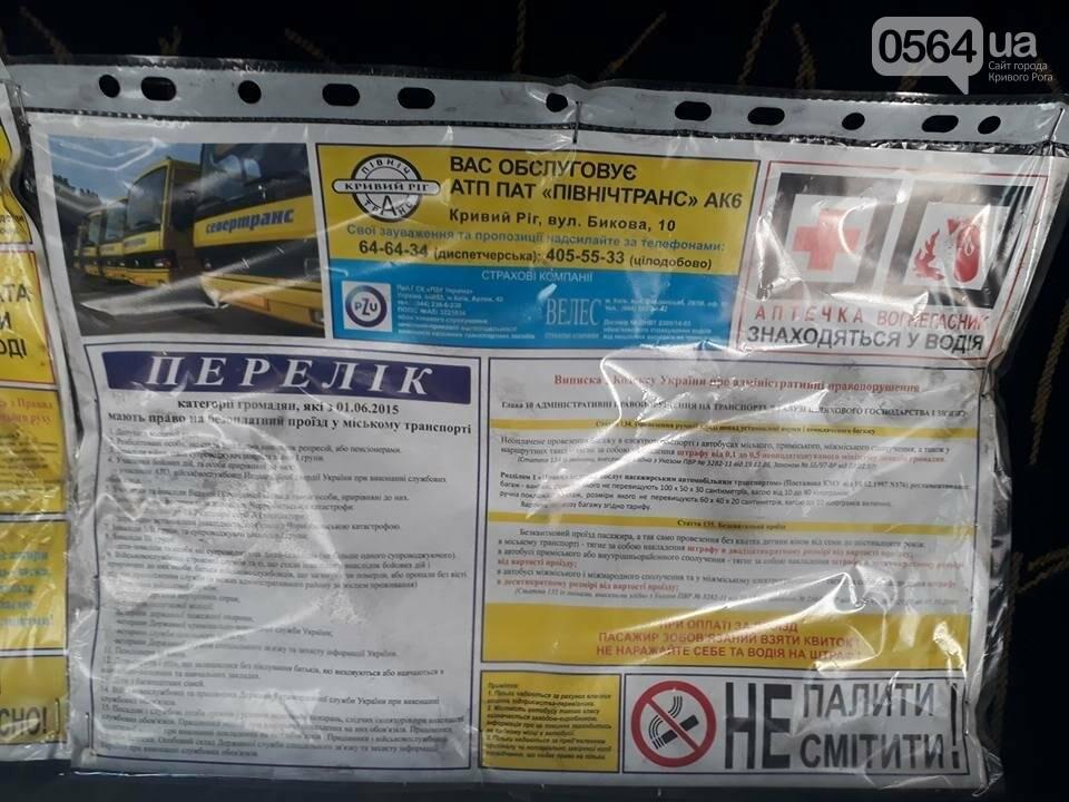 В Кривом Роге из-за гонок маршрутчиков пострадал ребенок (ФОТО), фото-3