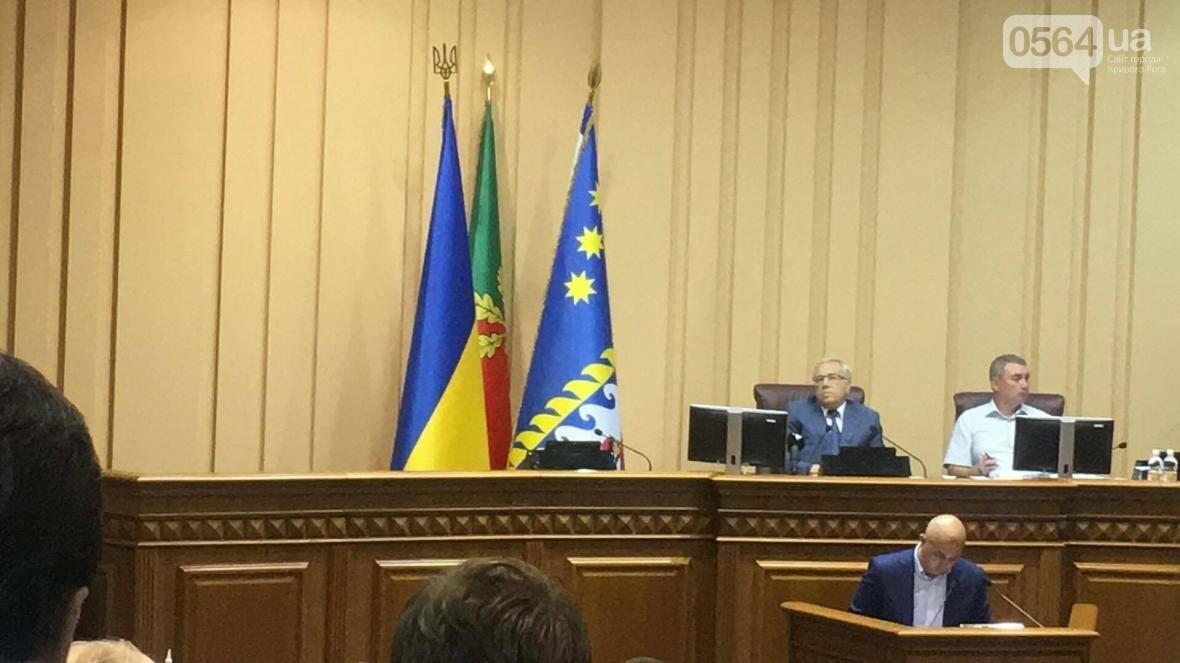 В Кривом Роге проходит пленарное заседание сессии горсовета (ФОТО), фото-6