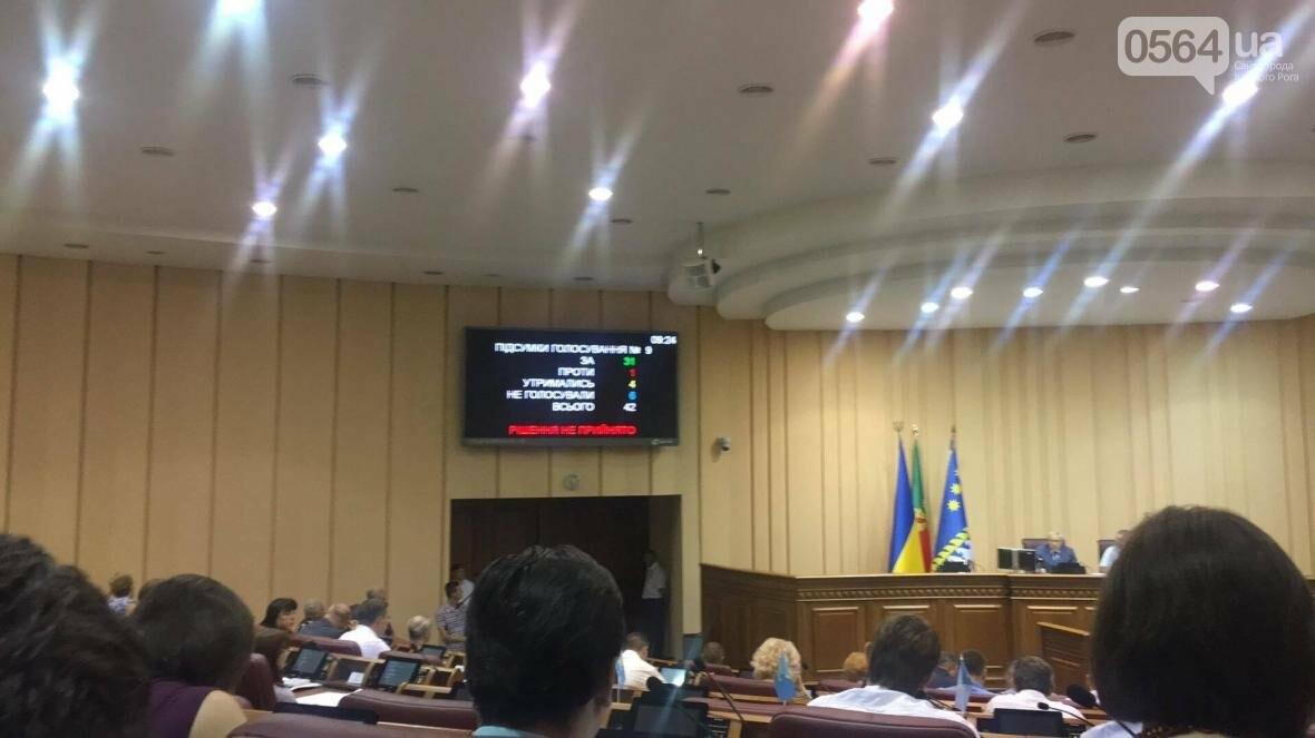 Криворожские депутаты не поддержали исполкомовский проект решения о благоустройстве (ФОТО), фото-4