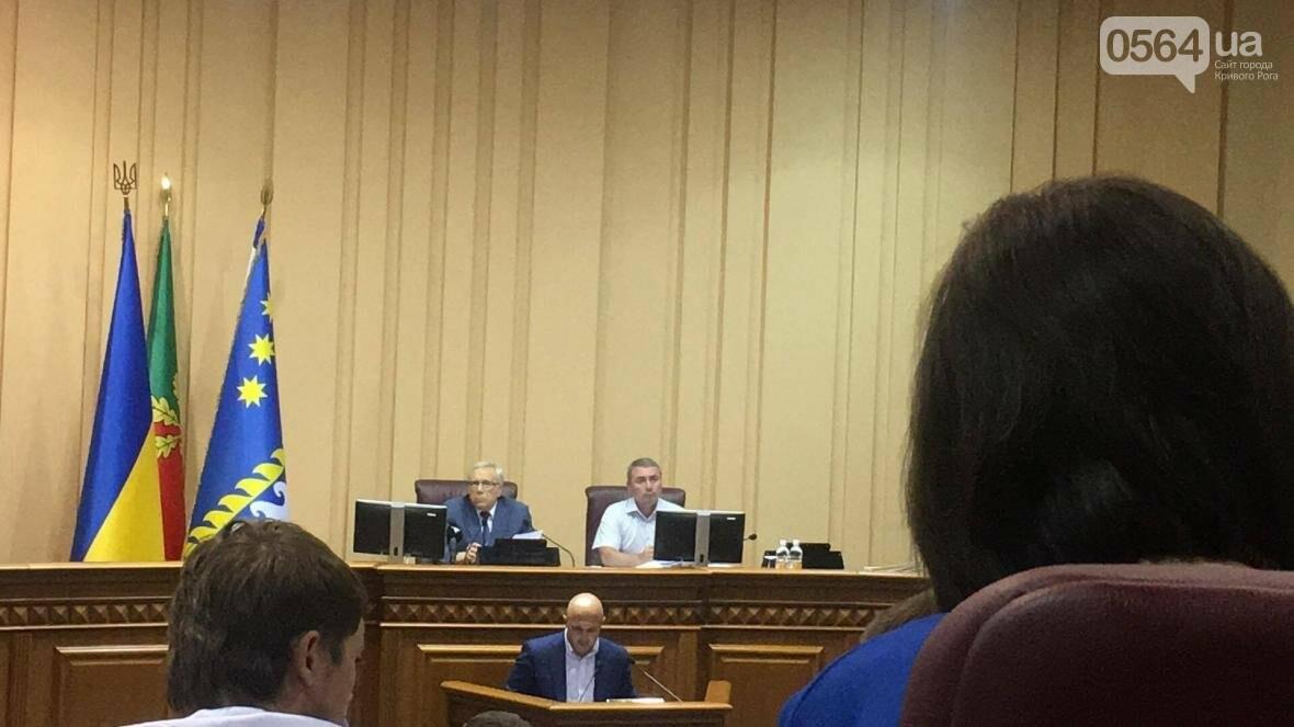 Криворожские депутаты не поддержали исполкомовский проект решения о благоустройстве (ФОТО), фото-5