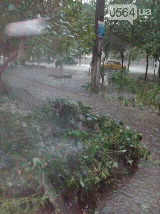 В Кривом Роге аномальную жару сменил град размером с куриное яйцо (ФОТО, ВИДЕО), фото-5