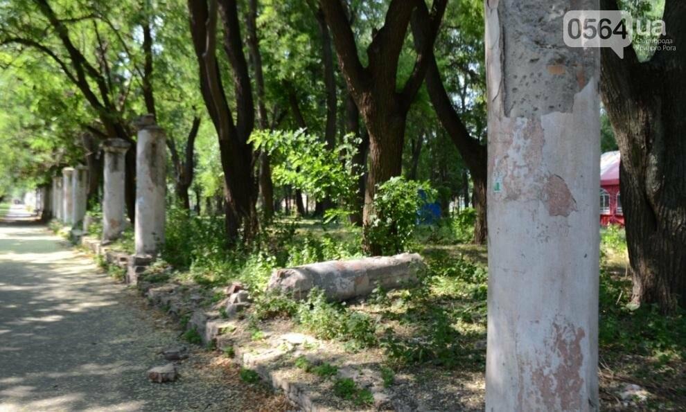 В каком из криворожских парков господствуют тишина, укромность и разруха? (ФОТО), фото-9