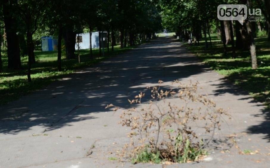 В каком из криворожских парков господствуют тишина, укромность и разруха? (ФОТО), фото-2