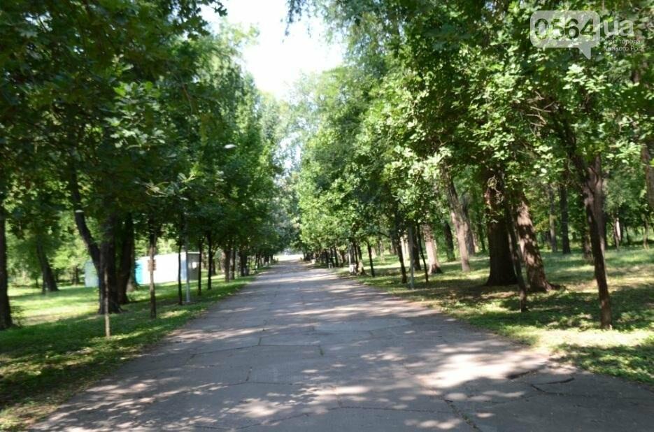 В каком из криворожских парков господствуют тишина, укромность и разруха? (ФОТО), фото-20