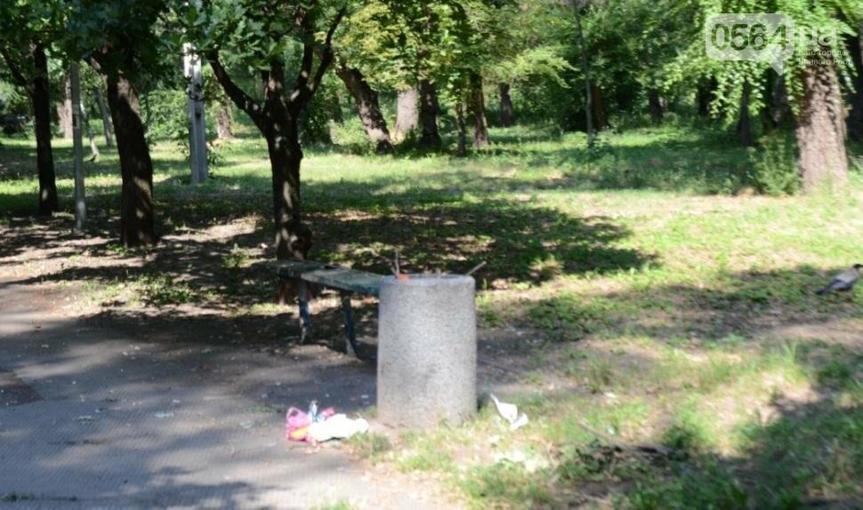 В каком из криворожских парков господствуют тишина, укромность и разруха? (ФОТО), фото-5