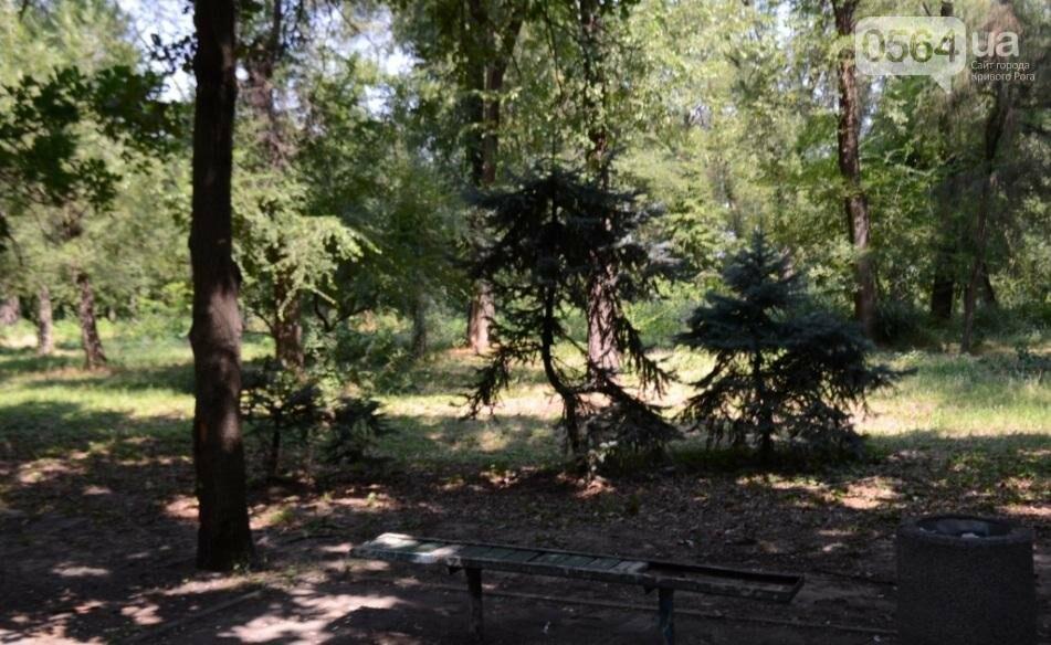 В каком из криворожских парков господствуют тишина, укромность и разруха? (ФОТО), фото-18