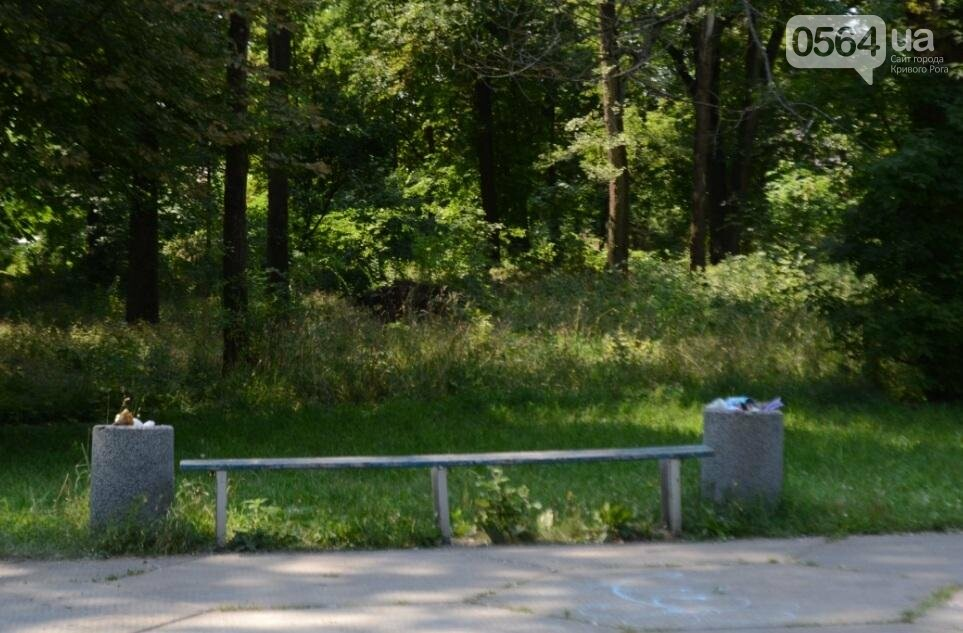 В каком из криворожских парков господствуют тишина, укромность и разруха? (ФОТО), фото-13