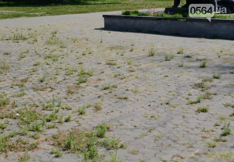 В каком из криворожских парков господствуют тишина, укромность и разруха? (ФОТО), фото-16