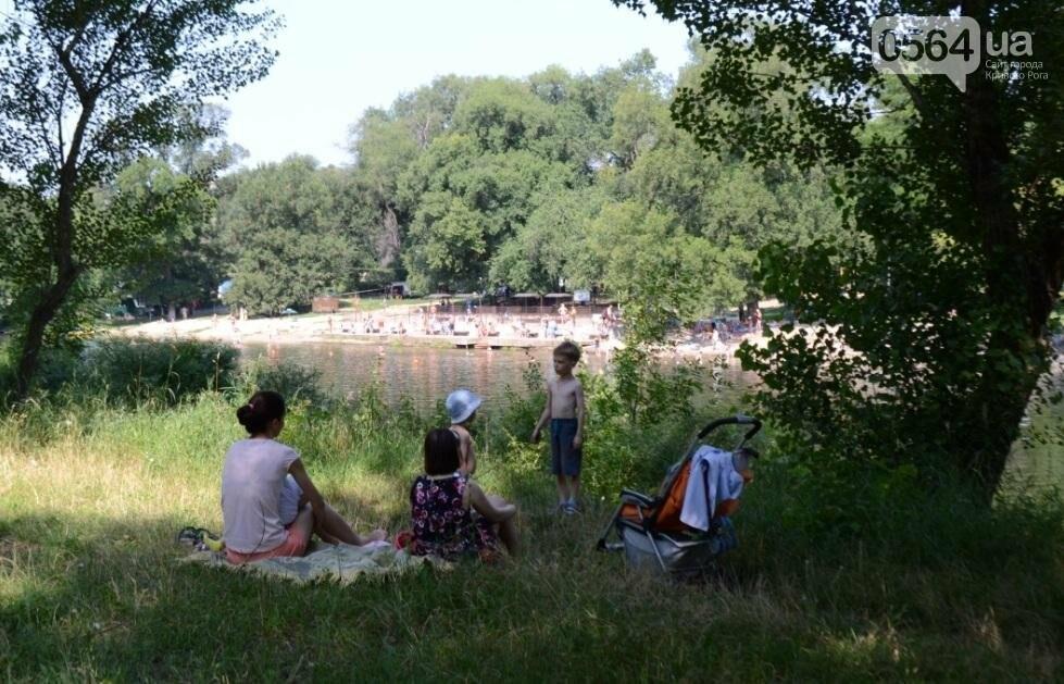 В каком из криворожских парков господствуют тишина, укромность и разруха? (ФОТО), фото-30