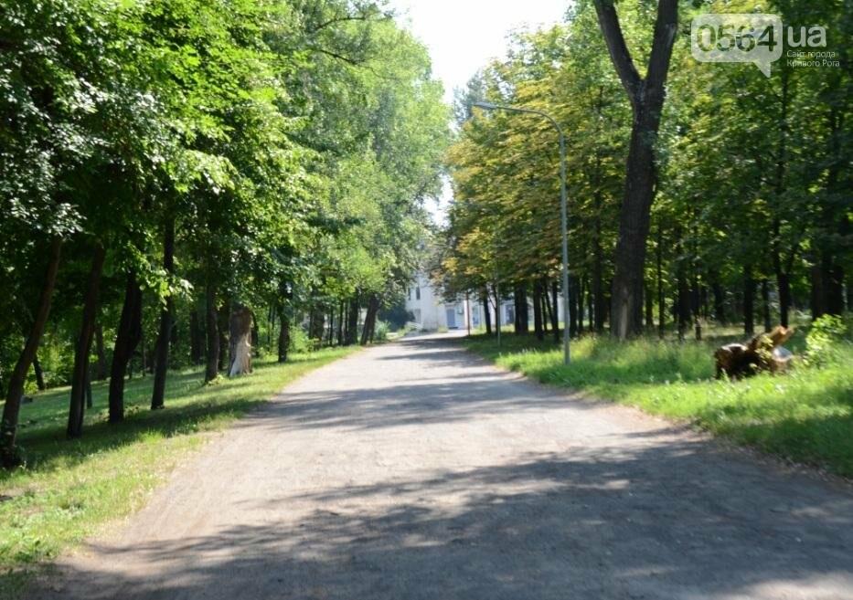 В каком из криворожских парков господствуют тишина, укромность и разруха? (ФОТО), фото-31