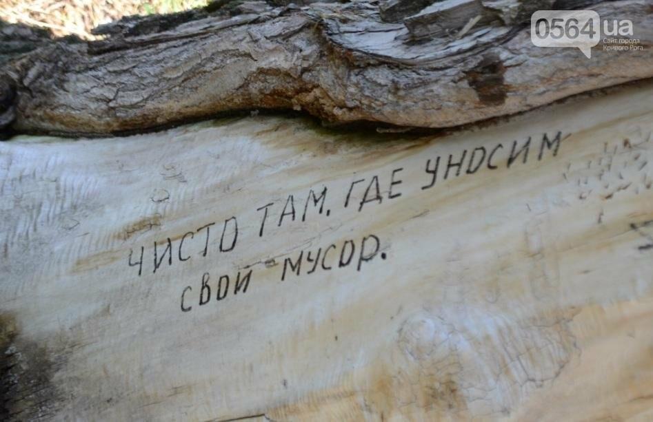В каком из криворожских парков господствуют тишина, укромность и разруха? (ФОТО), фото-8
