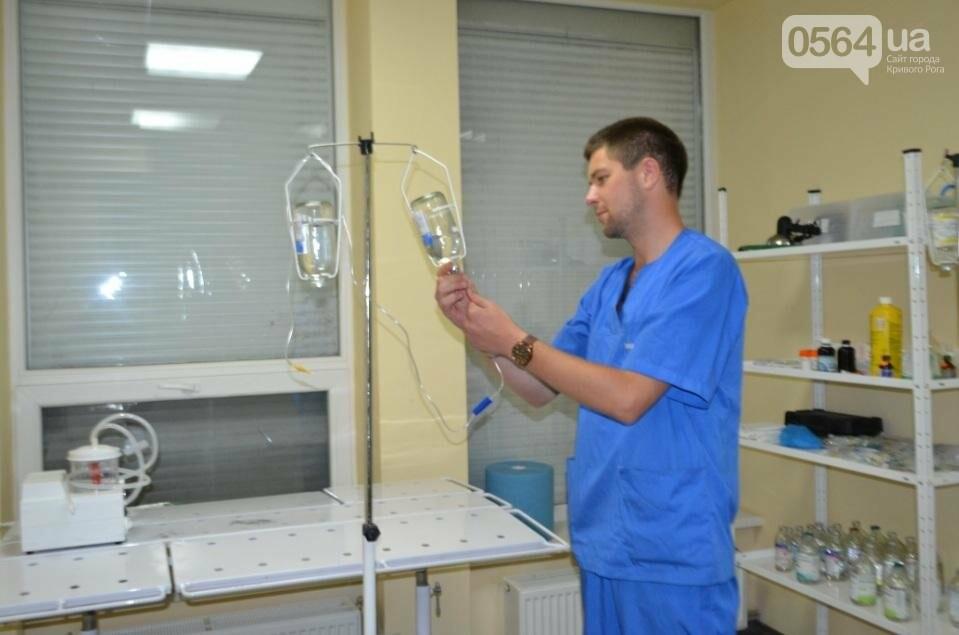 Без выходных: Как в Кривом Роге спасают хвостатых пациентов (ФОТО), фото-6