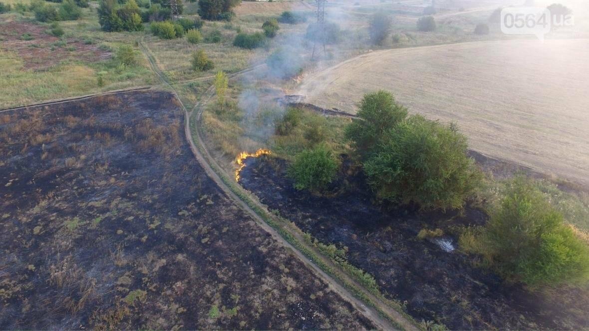В сети опубликовали шокирующие фото пожаров под Кривым Рогом (ФОТО), фото-2