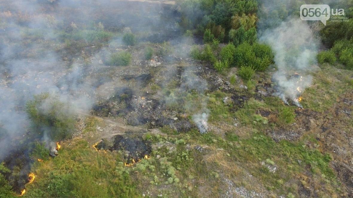 В сети опубликовали шокирующие фото пожаров под Кривым Рогом (ФОТО), фото-9