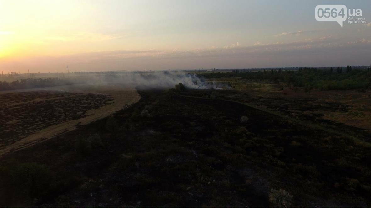 В сети опубликовали шокирующие фото пожаров под Кривым Рогом (ФОТО), фото-3