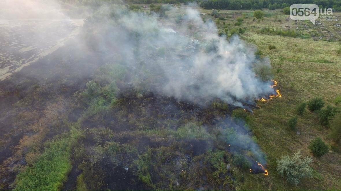В сети опубликовали шокирующие фото пожаров под Кривым Рогом (ФОТО), фото-6