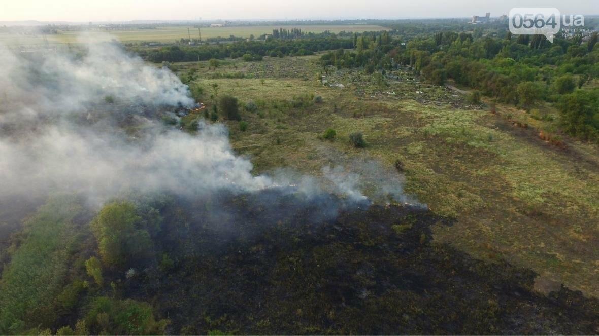 В сети опубликовали шокирующие фото пожаров под Кривым Рогом (ФОТО), фото-4