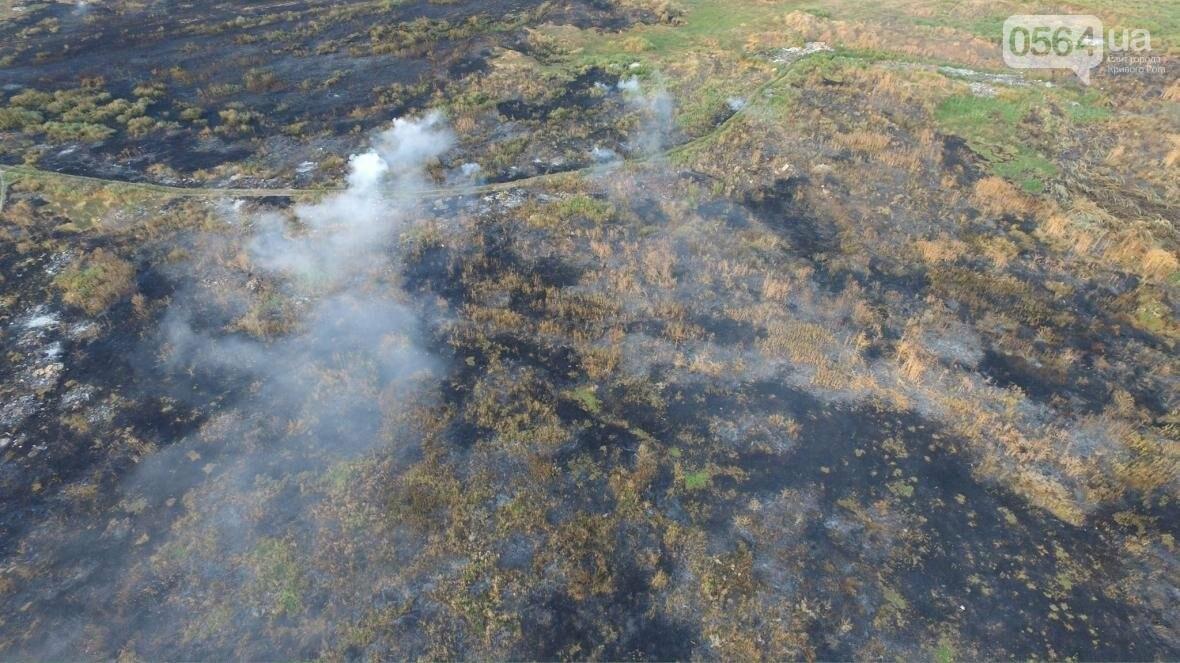 В сети опубликовали шокирующие фото пожаров под Кривым Рогом (ФОТО), фото-15