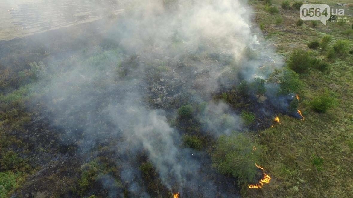 В сети опубликовали шокирующие фото пожаров под Кривым Рогом (ФОТО), фото-13