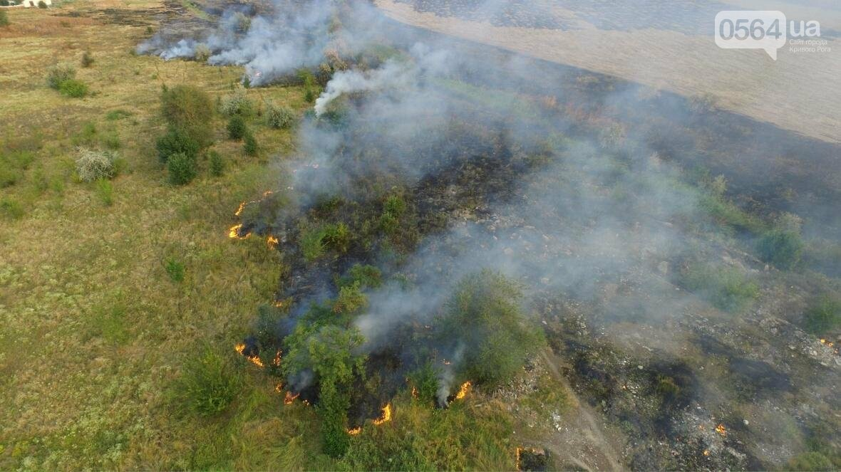 В сети опубликовали шокирующие фото пожаров под Кривым Рогом (ФОТО), фото-16