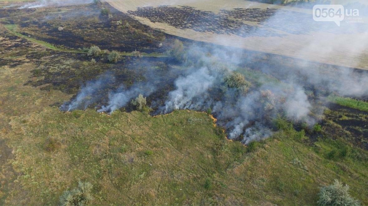 В сети опубликовали шокирующие фото пожаров под Кривым Рогом (ФОТО), фото-14