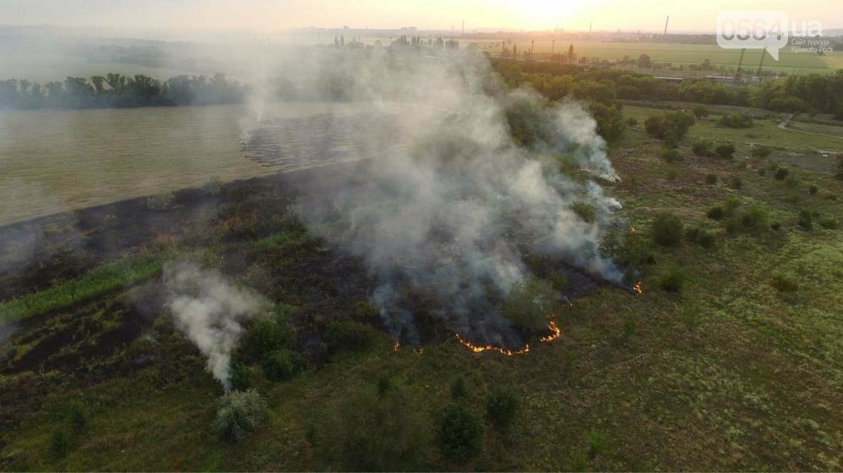 В сети опубликовали шокирующие фото пожаров под Кривым Рогом (ФОТО), фото-7