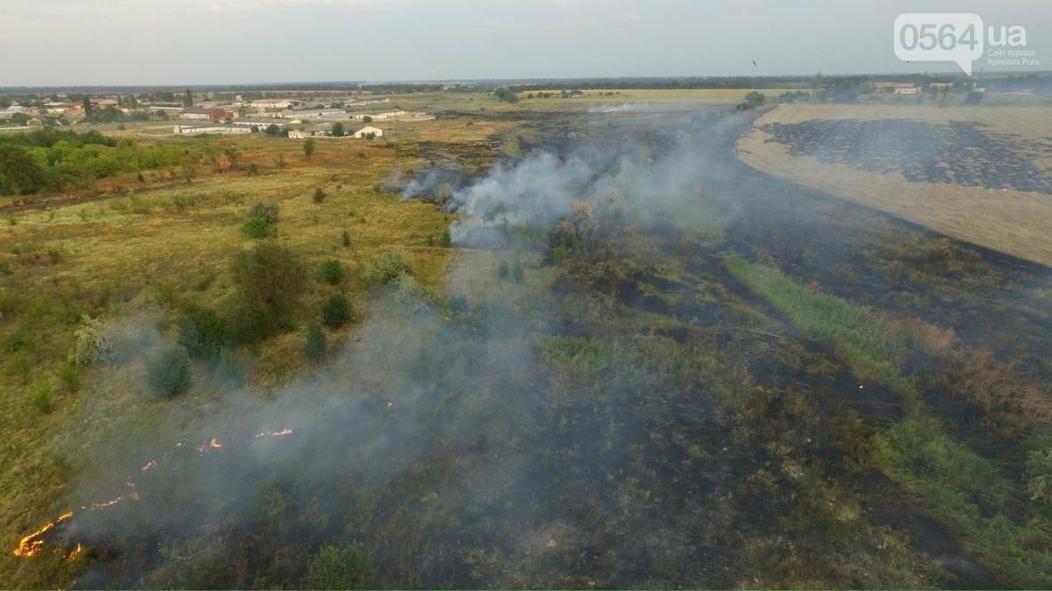 В сети опубликовали шокирующие фото пожаров под Кривым Рогом (ФОТО), фото-8