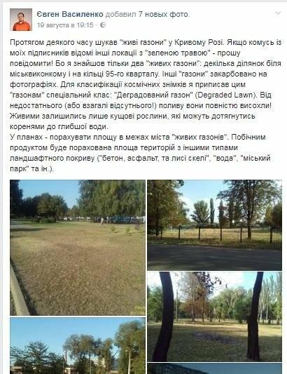 """В Кривом Роге большинство газонов находятся в """"деградированном"""" состоянии (ИНФОГРАФИКА), фото-3"""