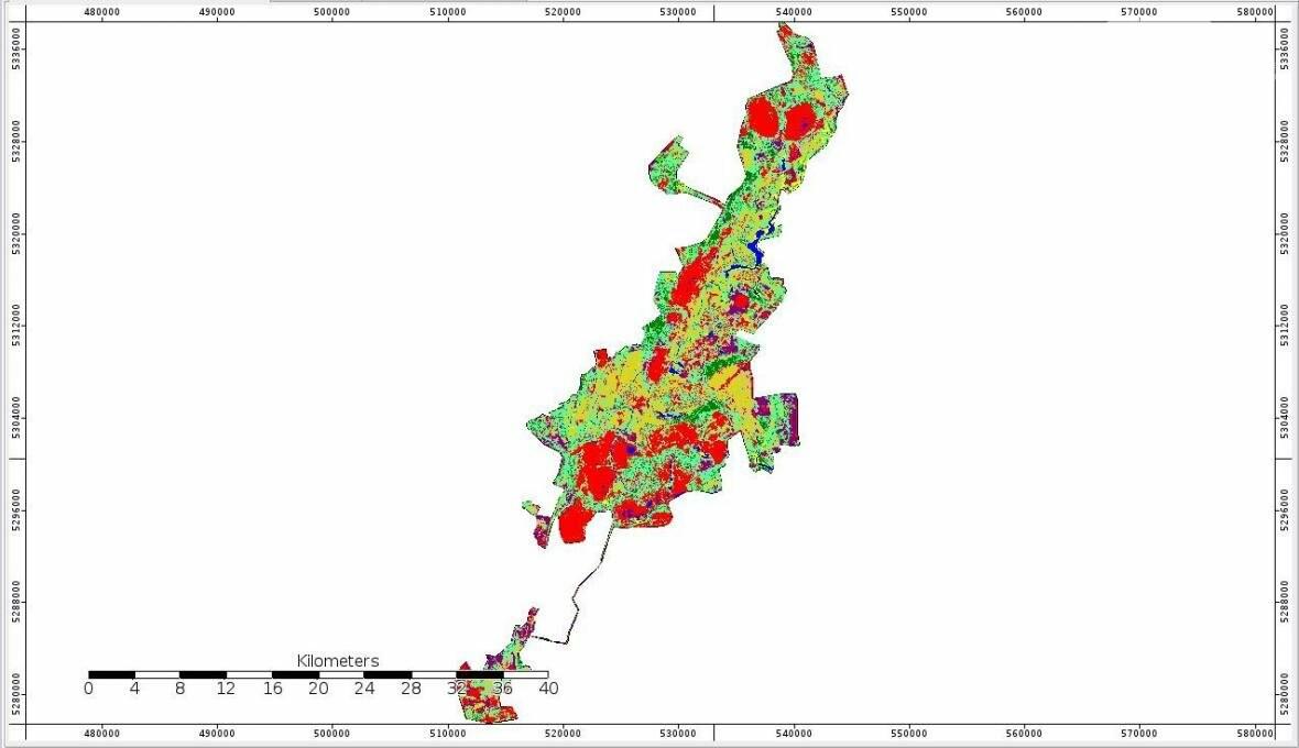 """В Кривом Роге большинство газонов находятся в """"деградированном"""" состоянии (ИНФОГРАФИКА), фото-5"""