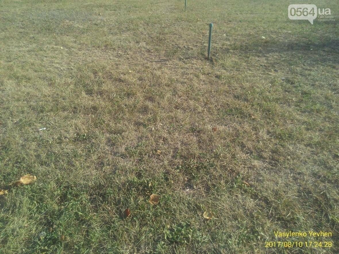 """В Кривом Роге большинство газонов находятся в """"деградированном"""" состоянии (ИНФОГРАФИКА), фото-14"""