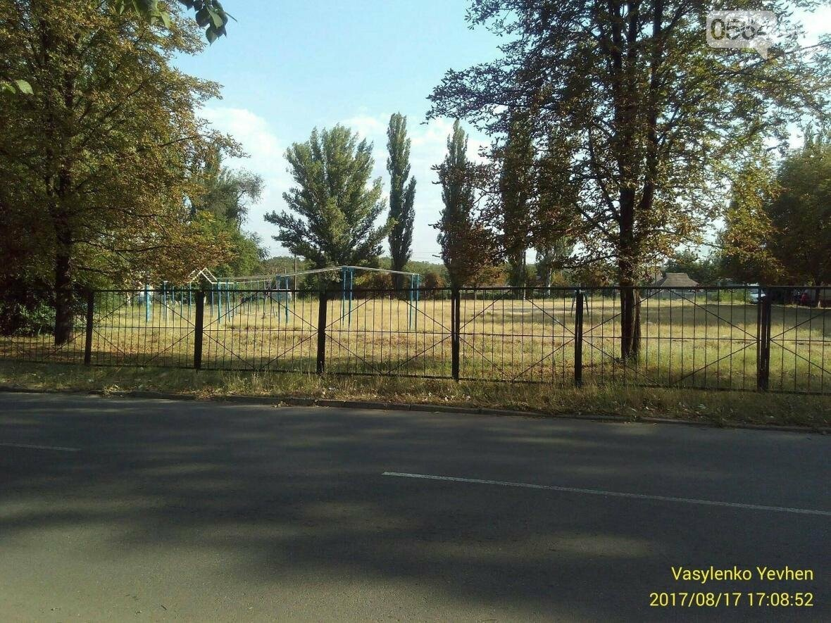 """В Кривом Роге большинство газонов находятся в """"деградированном"""" состоянии (ИНФОГРАФИКА), фото-11"""
