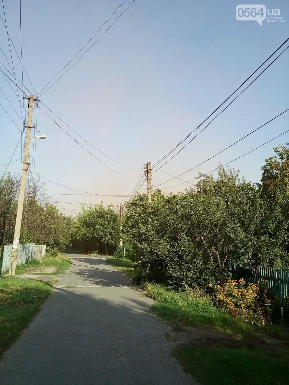 В Кривом Роге: люди жаловались на выбросы, троллейбус уехал на рекорд, Вячеслав Волк начал дышать самостоятельно, фото-2