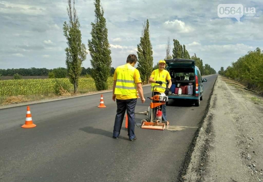 Эксперты проверили соответствие дороги на трассе Кривой Рог - Николаев нормам (ФОТО), фото-3