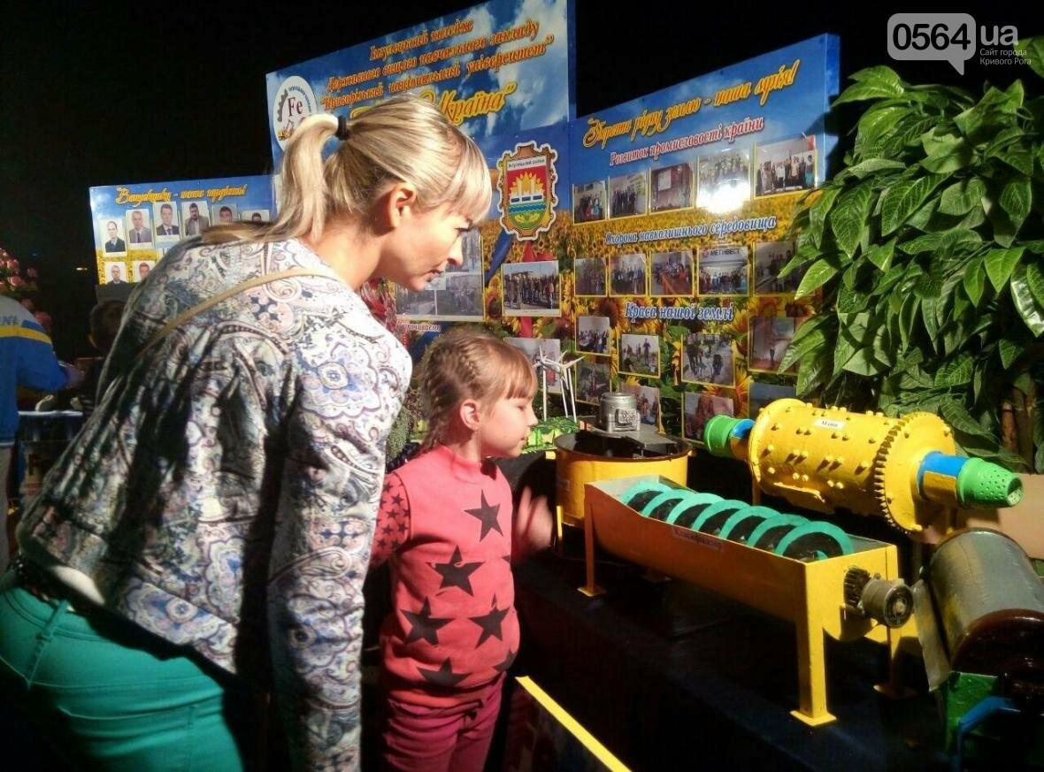 В Кривом Роге состоялся уникальный ночной фестиваль (ФОТО), фото-21