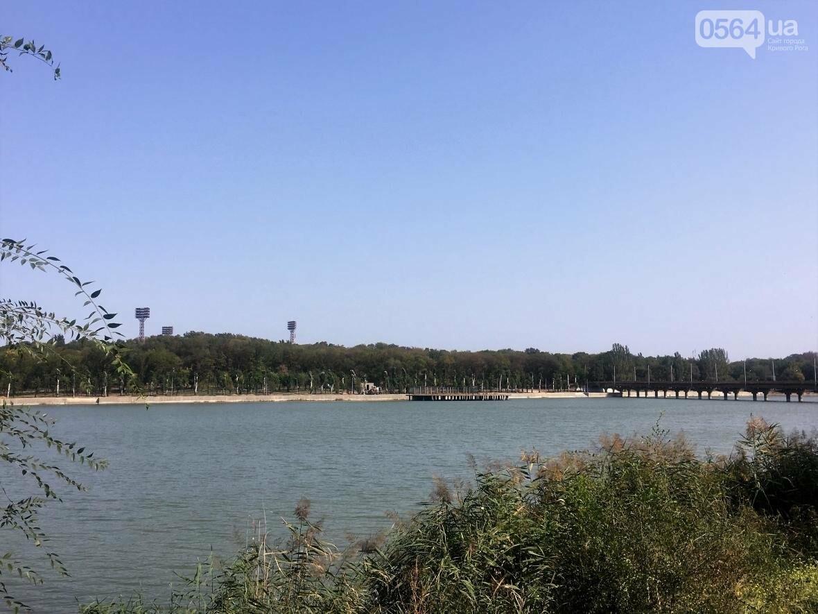В Кривом Роге водоем превращается в лужу (ФОТО), фото-6
