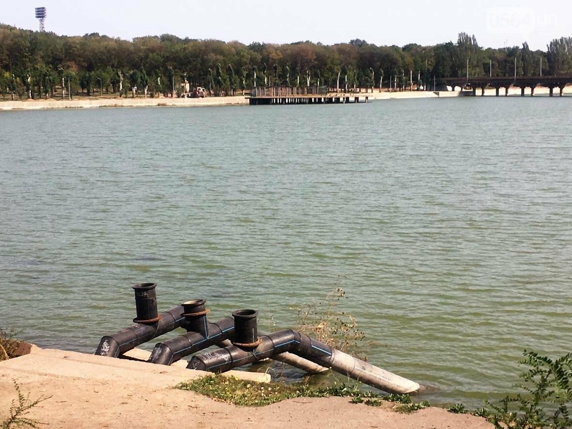 В Кривом Роге водоем превращается в лужу (ФОТО), фото-4