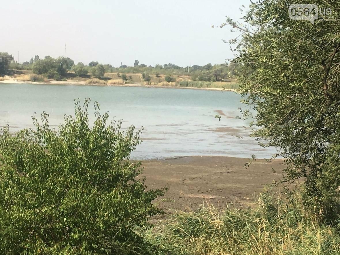 В Кривом Роге водоем превращается в лужу (ФОТО), фото-9