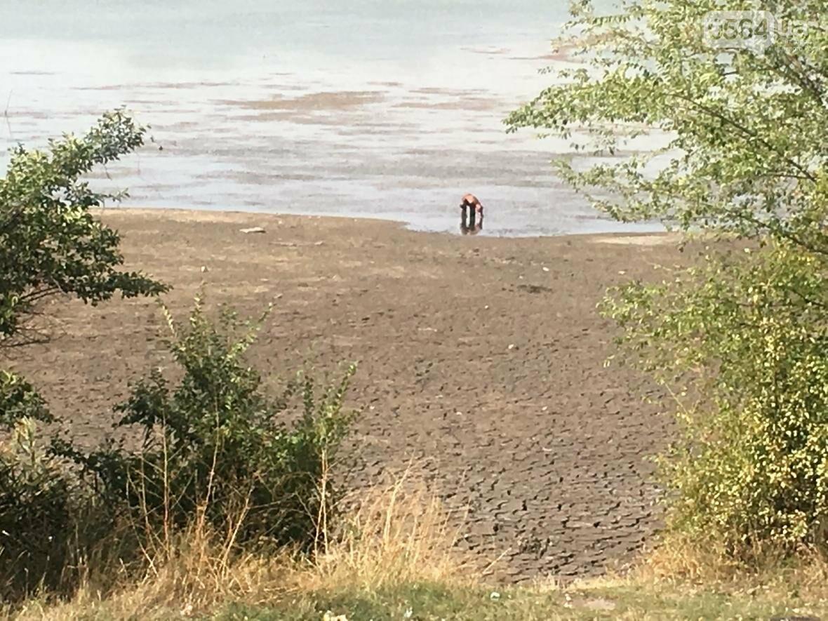 В Кривом Роге водоем превращается в лужу (ФОТО), фото-3