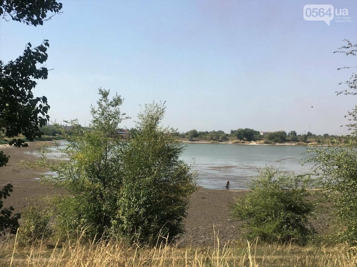 В Кривом Роге водоем превращается в лужу (ФОТО), фото-14