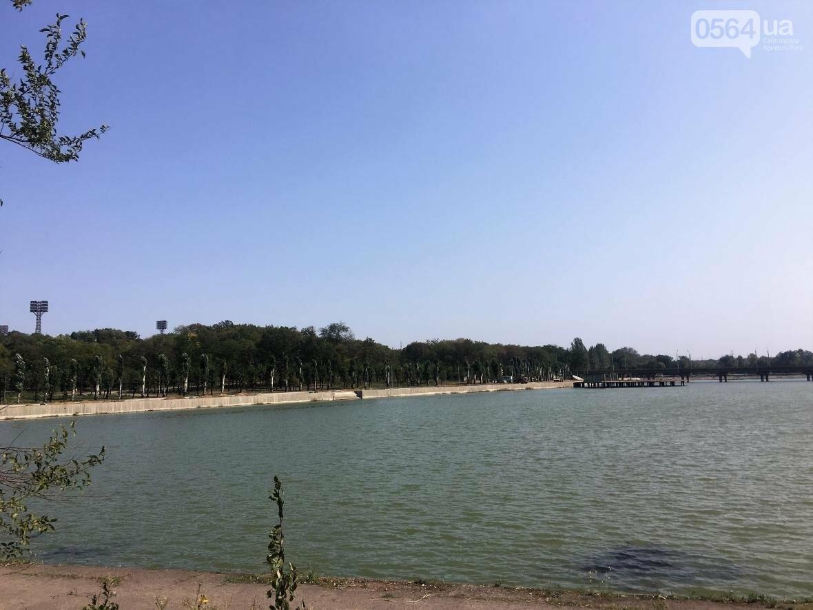 В Кривом Роге водоем превращается в лужу (ФОТО), фото-10