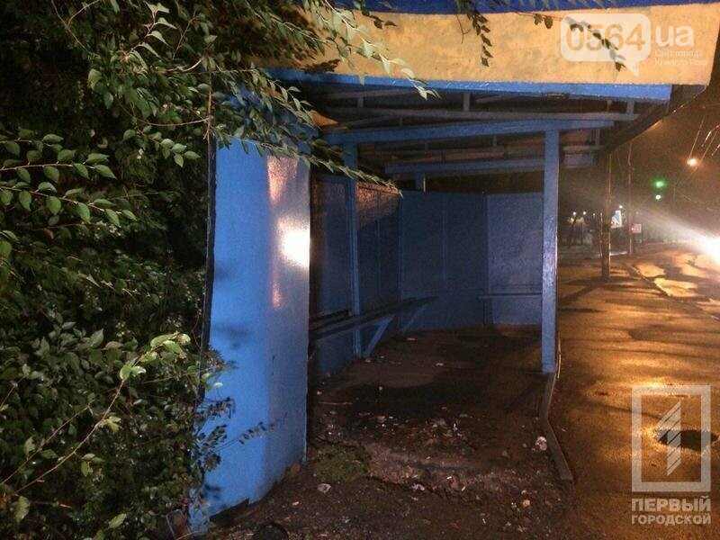 Из-за дождя в Кривом Роге легковушка слетела в кювет (ФОТО), фото-1