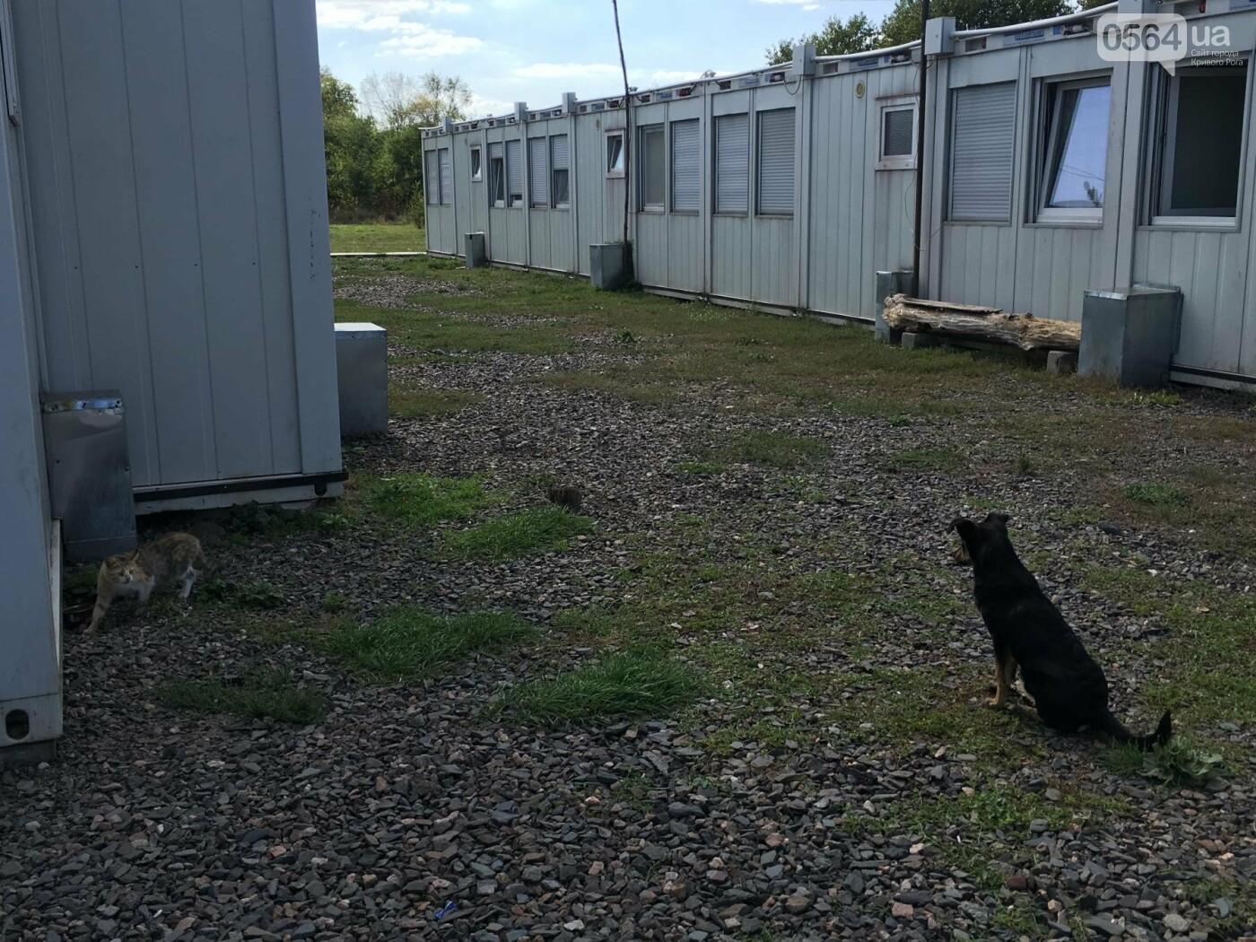 Какие проблемы влияют на качество жизни переселенцев в Кривом Роге?  (ФОТО), фото-27