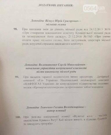 Увольнение Шовгели и бездомные коты, -  в Кривом Роге депутаты готовятся к пленарному заседанию (ФОТО), фото-1