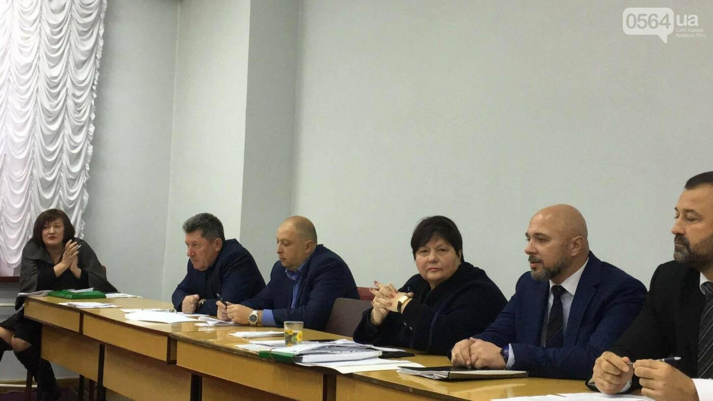 Увольнение Шовгели и бездомные коты, -  в Кривом Роге депутаты готовятся к пленарному заседанию (ФОТО), фото-4