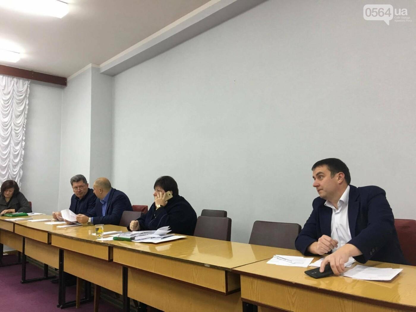 Увольнение Шовгели и бездомные коты, -  в Кривом Роге депутаты готовятся к пленарному заседанию (ФОТО), фото-6